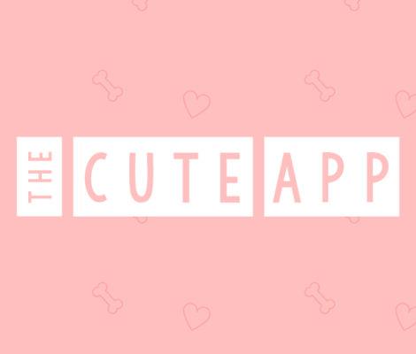 The Cute App
